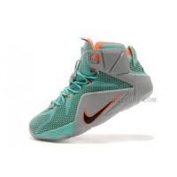 LeBron 12 NSRL Nike Zoom Lebron 12 Original Shoes