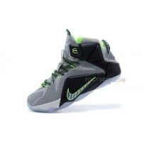 LeBron 12 Dunk Force Nike Zoom Lebron 12 Original Shoes