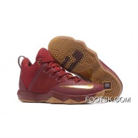 Nike LeBron Ambassador 9 Wine Red Gold Gum New Style QPxRY